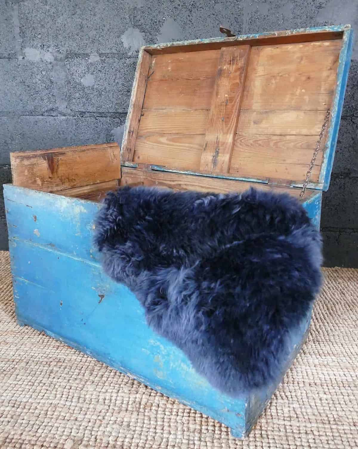 open blue chest with blue fur rug inside