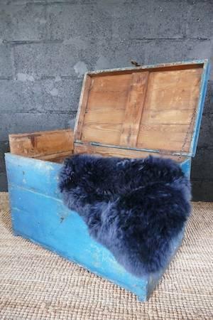 DISTRESSED BLUE TRUNK