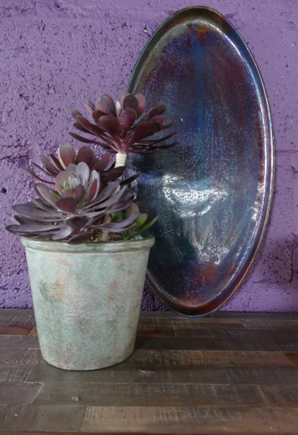 rustic flower pot with plant and tray