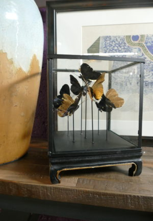 glass case with gold butterflies inside on table