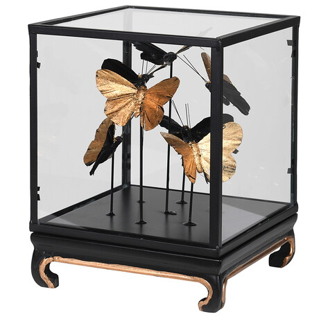 Glass case with gold butterflies inside