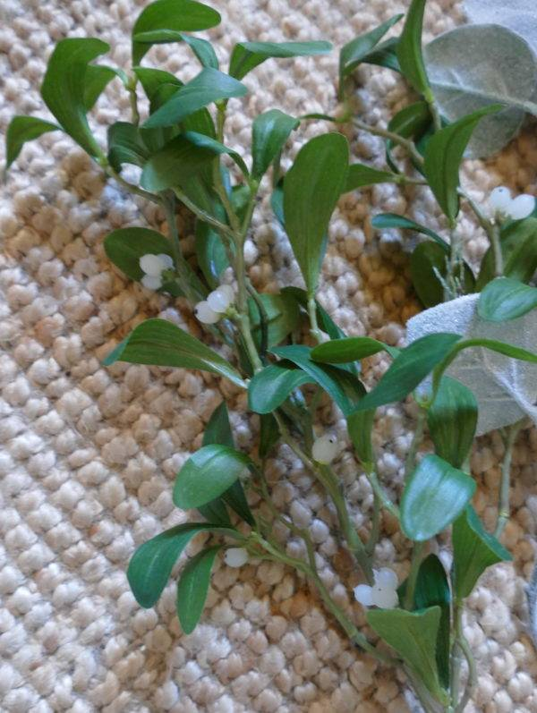 GREEN MISTLETOE ON RUG