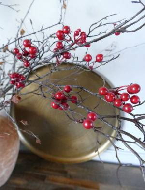 RED BERRIES IN WATER POT