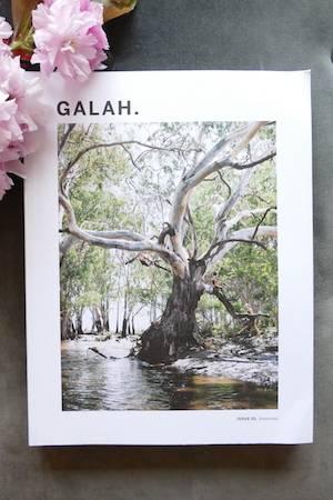 Galah Limitations