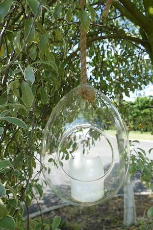 GIANT GLASS EGG TERRARIUM WITH ROPE SINGLE
