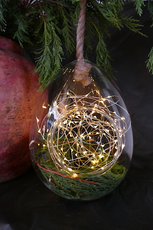 GIANT GLASS EGG TERRARIUM WITH ROPE